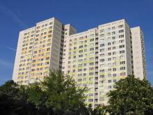 zdj. agenadevelopment.pl